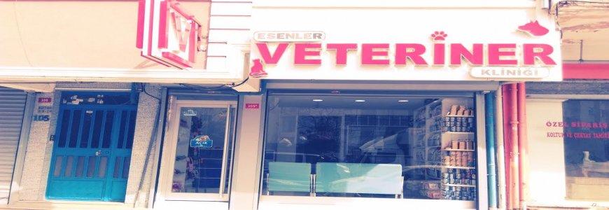 Fatih Topkapıya Yakın Veteriner Kliniği 7/24 Acil Veteriner ait tanıtım resmi