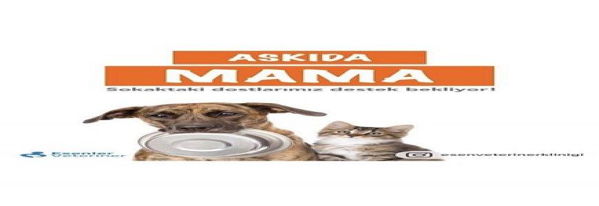 Sokaktaki Dostlarımızı  Unutmadık Askıda Mama Kampanyası başlattık ait tanıtım resmi
